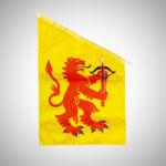 Småland flagga