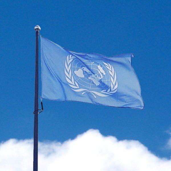 Fn-flagga mot blå himmel